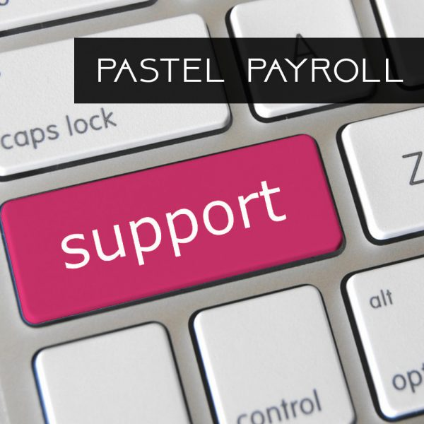 pastel-payroll-support
